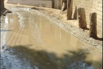 تحولت إلى برك.. أهالي قرية ابن العاص يستغيثون من انهيار الصرف الصحي