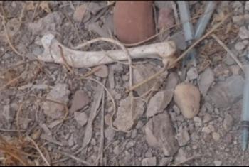 استغاثات من انتشار المخدرات بمقابر أولاد فضل في أبوكبير