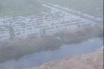 ارتفاع منسوب مياه ترع قرى بحر البقر بالحسينية