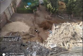 حيوانات نافقة بمجلس مدينة فاقوس تثير غضب العاملين